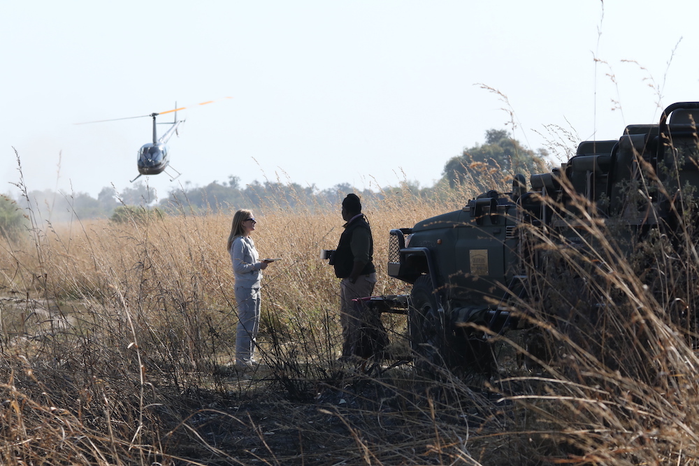 tourist and safari guide in Botswana plain with helicopter landing to administer covid test on game drive